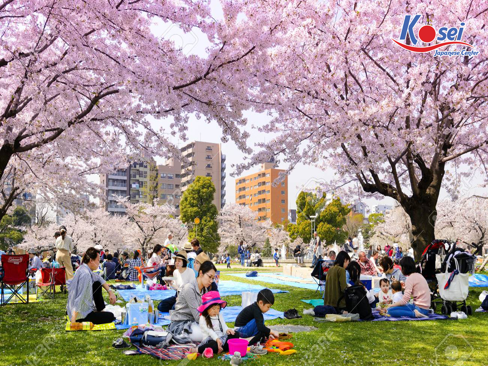 Top 8 lễ hội Nhật Bản tháng 4 lớn không thể bỏ lỡ, đầy sôi động
