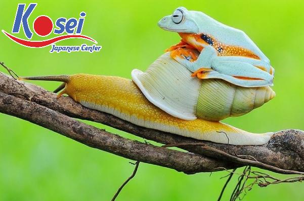 http://kosei.vn/top-ngu-phap-de-nham-nhat-xuat-hien-trong-bai-thi-doc-hieu-n3-n1930.html