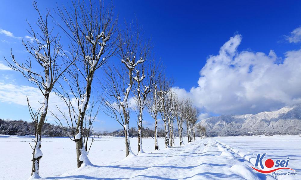 từ vựng hán tự冬 đông