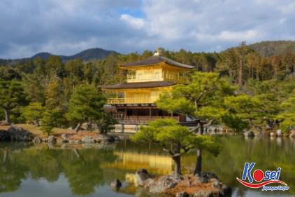 chùa vàng nhật bản, chùa vàng nhật bản ở đâu, chùa vàng nhật bản mùa lá đỏ, tìm hiểu về chùa vàng nhật bản