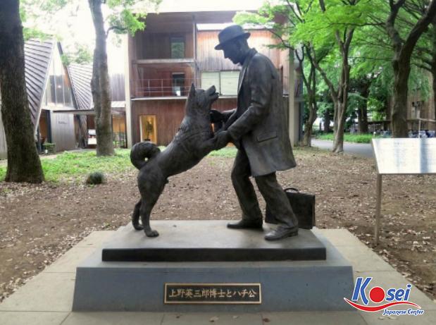 https://kosei.vn/cau-chuyen-chu-cho-hachiko-nhat-ban-huyen-thoai-ve-su-trung-thanh-n3157.html