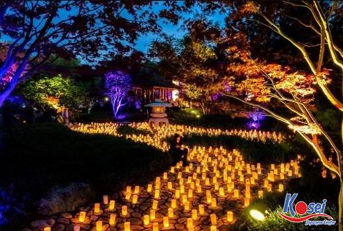 lễ hội nara nhật bản, lễ hội nara nhật bản 2019, lễ hội ở nara, lễ hội hoa đăng nara