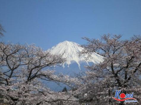 4 điều cần phải biết về núi Phú Sĩ Nhật Bản!
