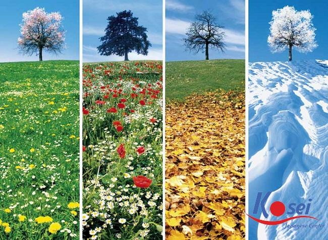 Vẻ đẹp trong bốn mùa Nhật Bản