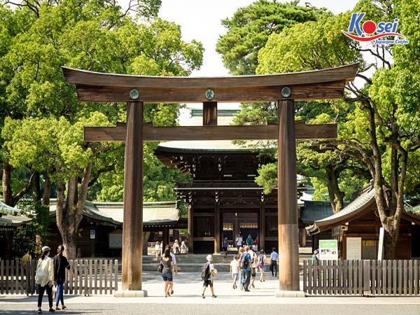 Cảnh đẹp mê hồn của đền thờ nổi tiếng ở Tokyo bậc nhất - Meiji Jingu