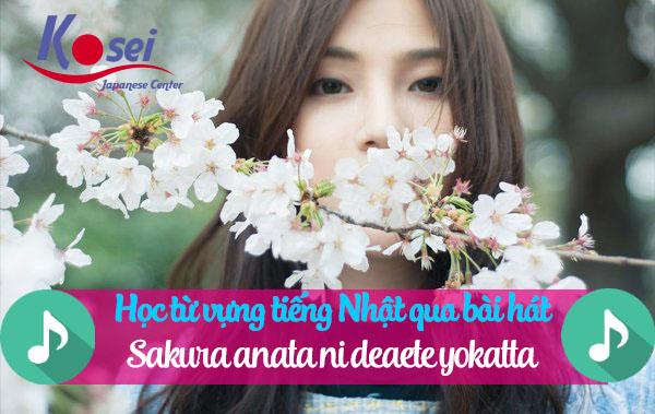 Học tiếng Nhật qua bài hát: Sakura anata ni deaete yokatta