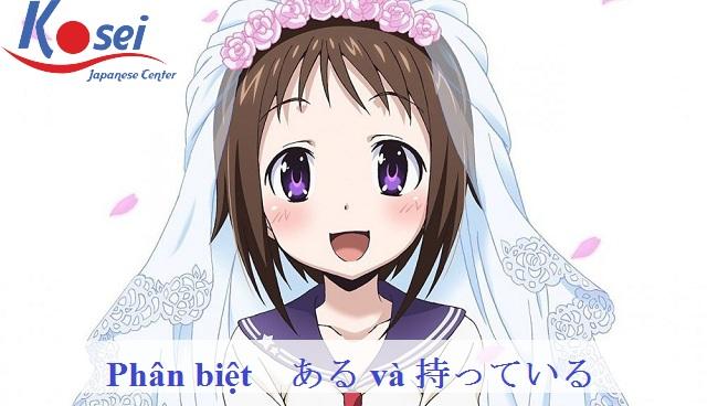 http://kosei.vn/phan-biet-ngu-phap-tieng-nhat-n5-va-n1427.html