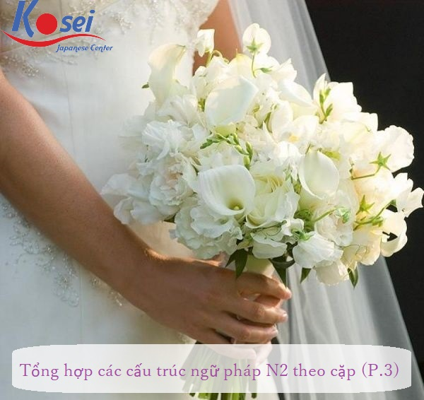 http://kosei.vn/tong-hop-cac-ngu-phap-n2-theo-cap-phan-3-n1543.html