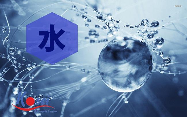 từ vựng kanji liên quan đến thuỷ 水