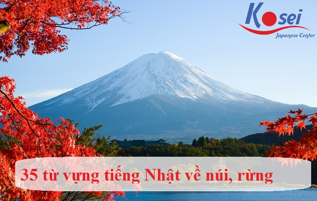 Từ vựng tiếng Nhật chủ đề: Núi rừng